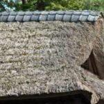 奇妙で不気味な体験 廃道の先の茅葺の屋敷
